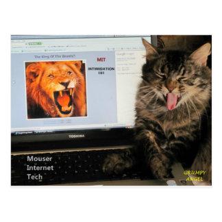 Mi gato estudia en la tecnología del Internet del Postal