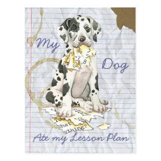 Mi great dane comió mi plan de lección tarjeta postal