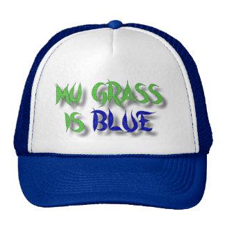 MI HIERBA ES BLUE-HAT GORRA