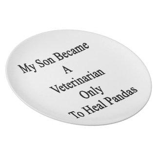 Mi hijo hizo veterinario para curar solamente pand plato de cena