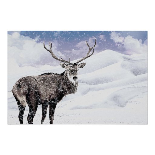 ¡Mi macho del invierno del navidad! Posters