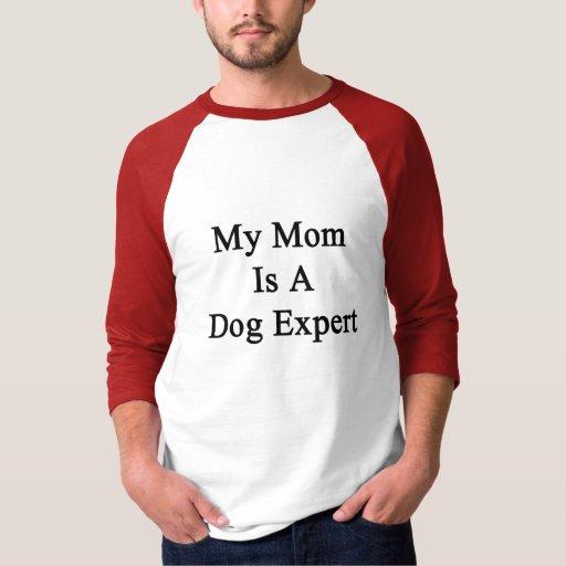 Mi mamá es un experto del perro playeras
