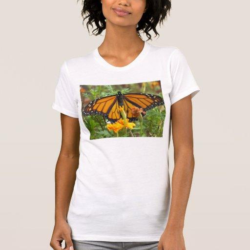 Mi Mariposa-camisetas del monarca