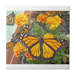 Mi Mariposa-teja del monarca Azulejo Cuadrado Pequeño