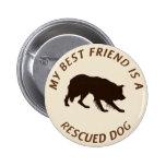 Mi mejor amigo (border collie) pins