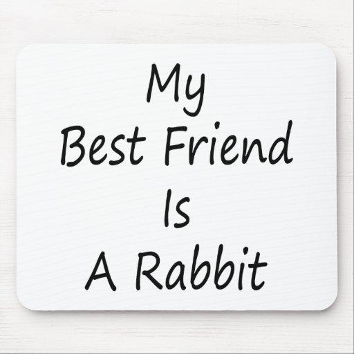 Mi mejor amigo es un conejo tapete de ratón