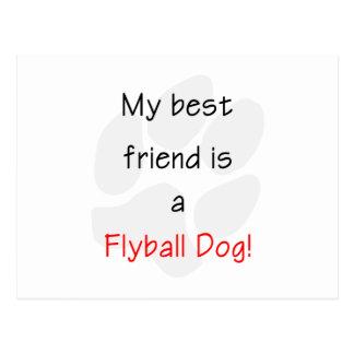 Mi mejor amigo es un perro de Flyball Postal