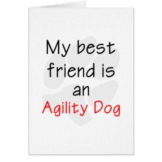 Mi mejor amigo es un perro de la agilidad tarjeta pequeña