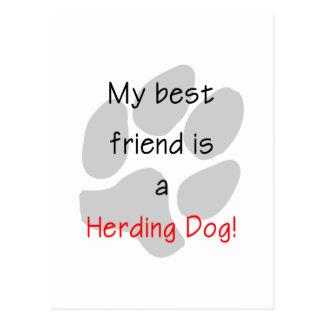 Mi mejor amigo es un perro de la reunión postal
