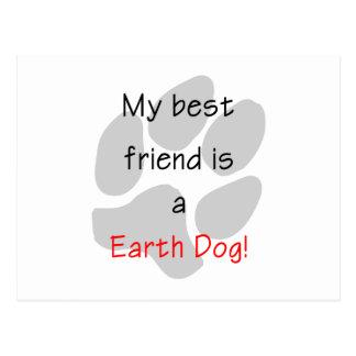 Mi mejor amigo es un perro de la tierra postal