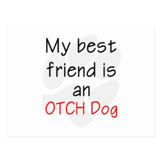Mi mejor amigo es un perro de OTCH Postal