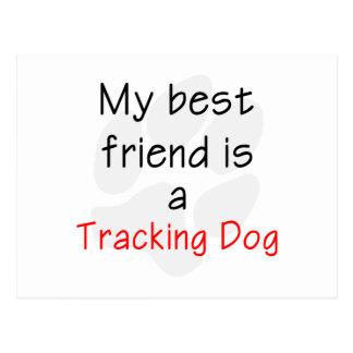 Mi mejor amigo es un perro de seguimiento postal