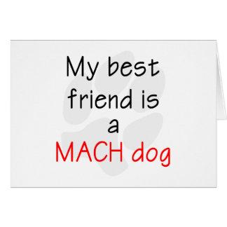 Mi mejor amigo es un perro del MACH Tarjeta Pequeña
