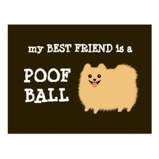 Mi mejor amigo es una bola del Poof - dibujo anima Postal