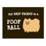 Mi mejor amigo es una bola del Poof - dibujo Tarjeta Postal