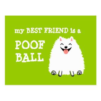 Mi mejor amigo es una bola del Poof - Pomeranian d Postal