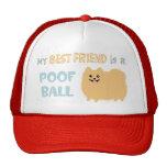 Mi mejor amigo es una BOLA del POOF - Pomeranian l Gorra