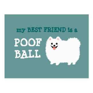 Mi mejor amigo es una bola del Poof - Pomeranian Tarjeta Postal