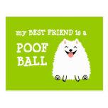 Mi mejor amigo es una bola del Poof - Pomeranian Tarjetas Postales