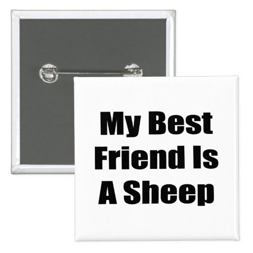 Mi mejor amigo es una oveja pin