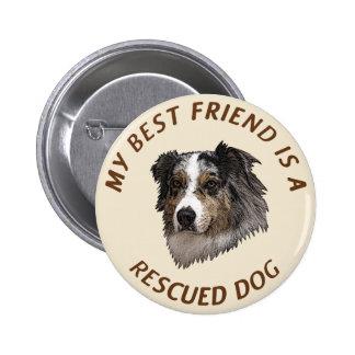 Mi mejor amigo (pastor australiano) pin