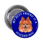 Mi mejor amigo (Pomeranian) Pin