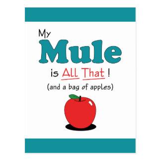 ¡Mi mula es toda la eso! Mula divertida Postal