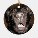 mi nombre es perro ornamentos para reyes magos
