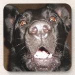 mi nombre es perro posavasos de bebida