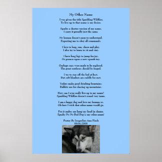 Mi otro poster conocido de la poesía