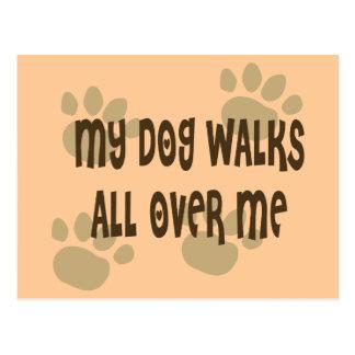 Mi perro camina por todo mí tarjetas postales