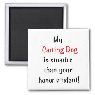 Mi perro Carting es más elegante… Imán Para Frigorífico