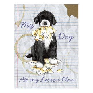 Mi perro de agua portugués comió mi plan de lecció postal