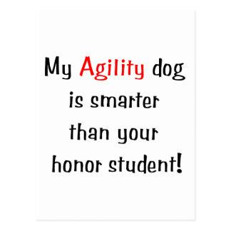 Mi perro de la agilidad es más elegante postal