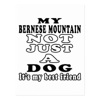 Mi perro de montaña de Bernese no apenas un perro Postal