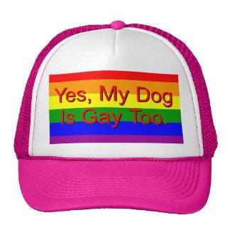 ¿Mi perro es sí gay también? Gorra