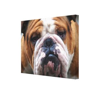 ¡Mi perro gruñón está diciendo el dogo!!! Impresiones En Lienzo Estiradas