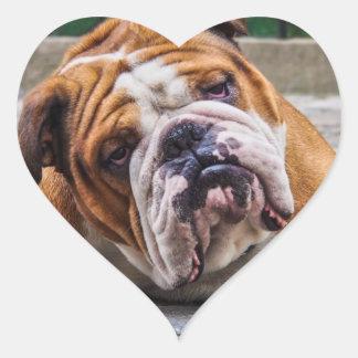 ¡Mi perro gruñón está diciendo el dogo!!! Calcomanía De Corazón Personalizadas