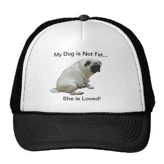 Mi perro no es barro amasado gordo gorras de camionero