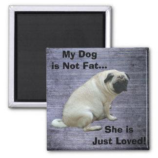 Mi perro no es barro amasado gordo imán cuadrado