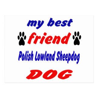 Mi perro pastor de la tierra baja del polaco del postal
