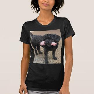 Mi perro Romeo Camisetas