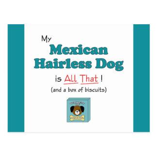 ¡Mi perro sin pelo mexicano es todo el eso! Postal
