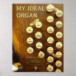 Mi poster ideal del órgano