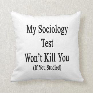 Mi prueba de la sociología no le matará si usted almohadas
