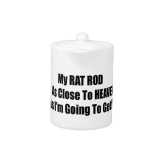 Mi rata Rod está tan cerca al cielo como Im que va