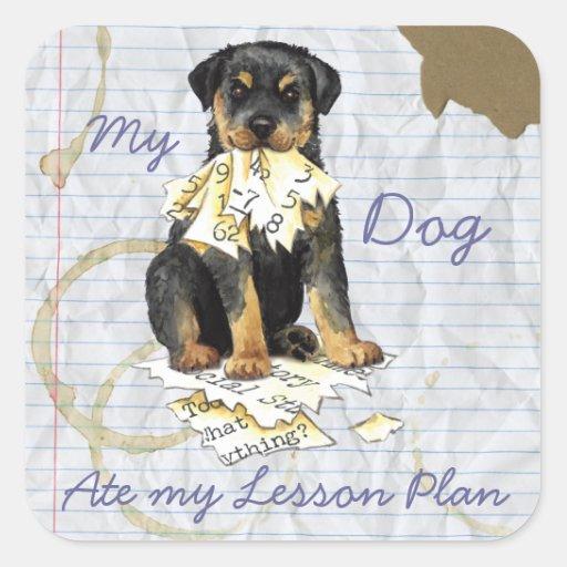 Mi Rottweiler comió mi plan de lección Pegatina Cuadrada
