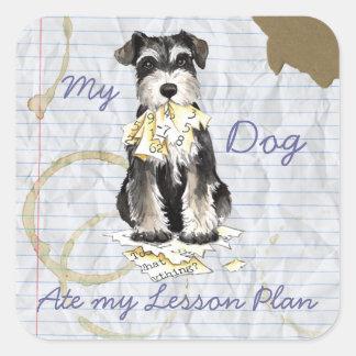 Mi Schnauzer miniatura comió mi plan de lección Calcomanías Cuadradas Personalizadas