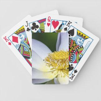 mi sol baraja de cartas
