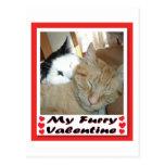 Mi tarjeta del día de San Valentín peluda Tarjetas Postales